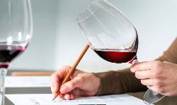 crea_degustazione_vini